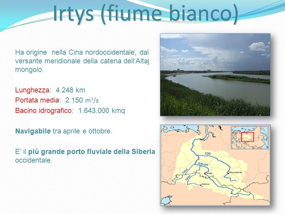 Irtys (fiume bianco) Ha origine nella Cina nordoccidentale, dal versante meridionale della catena dellAltaj mongolo. Lunghezza: 4.248 km Portata media