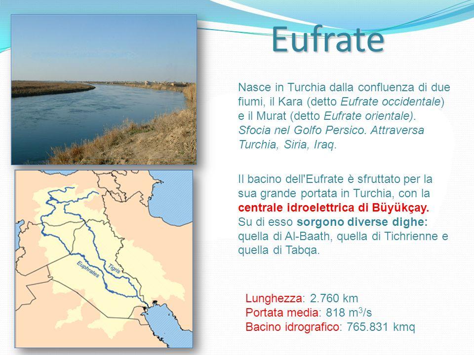 Eufrate Nasce in Turchia dalla confluenza di due fiumi, il Kara (detto Eufrate occidentale) e il Murat (detto Eufrate orientale). Sfocia nel Golfo Per