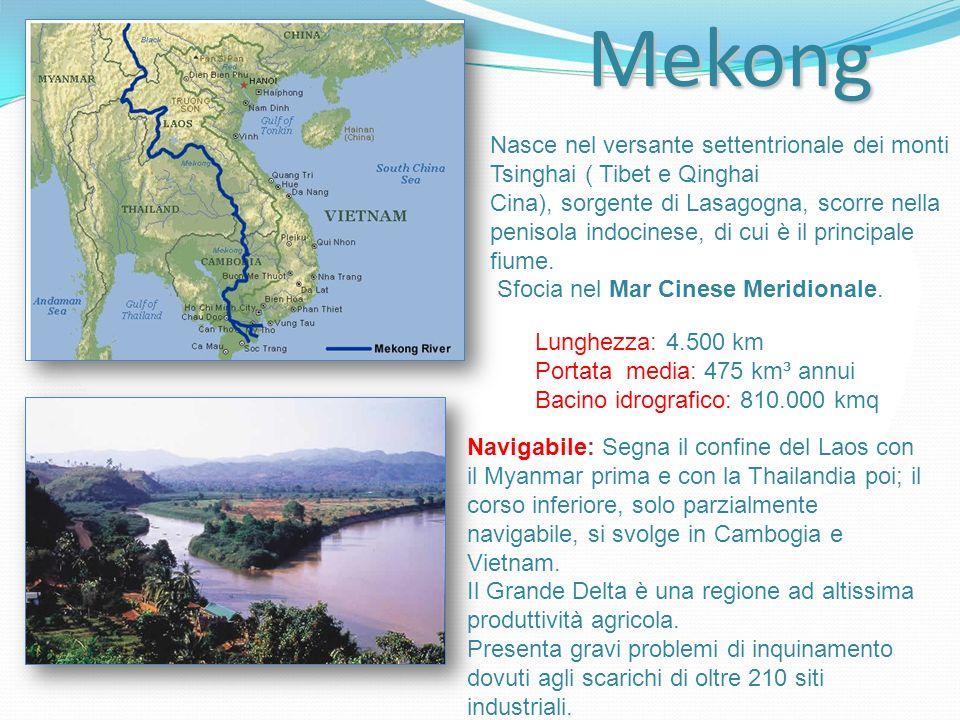 Mekong Nasce nel versante settentrionale dei monti Tsinghai ( Tibet e Qinghai Cina), sorgente di Lasagogna, scorre nella penisola indocinese, di cui è