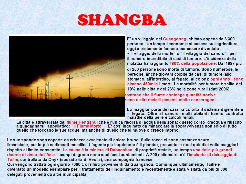 Fonti bibliografiche e sitografiche Testo scolastico di geografia classe 5^ Scenari geoeconomici, lepoca della globalizzazione PAG.327 http://www.cinaoggi.it/index.php?option=com_content&view=article&id=2048:le-11- citta-cinesi-piu-inquinate&catid=2:attualita-in-cina&Itemid=2 http://www.gay.tv/articolo/5/7611/Le-città-più-inquinate-del-mondo--viaggio-nel-cuore- nero-e-avvelenato-della-terra http://www.repubblica.it/ambiente/2009/12/14/news/il_cielo_e_nero_sopra_linfen_citt a_piu_inquinata_del_mondo-1819772/ http://www.ok-ambiente.com/2009/12/14/linfen-cina-ela-citta-piu-inquinata-del- pianeta/ http://www.terranauta.it/a1678/pianeta_gaia/linfen_l_inferno_e_in_cina.html http://diariodiviaggio.voloscontato.it/notizie-dal-mondo/la-citta-piu-inquinata-al-mondo- e-in-cina-linfen.php http://www.ambienteservizi.net/news/1107/CINA,-LINFEN,-CITTA -PIU -INQUINATA- DEL-MONDO/ http://marcopifferetti.altervista.org/index.htm http://it.wikipedia.org/wiki/Diga_delle_Tre_Gole http://titano.sede.enea.it/Stampa/skin2col.php?page=eneaperdettagliofigli&id=63 Serena Longoni VBIGEA - Alessandra Allievi, Francesco Carniel, Giorgio Linati, Michela Triggianese 4B IGEA
