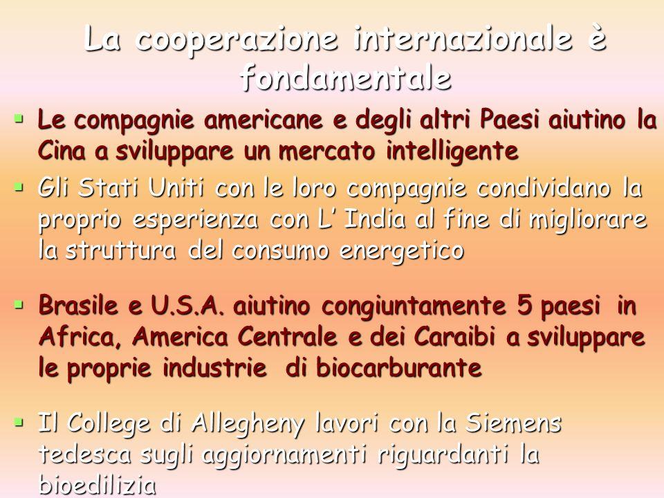 La cooperazione internazionale è fondamentale Le compagnie americane e degli altri Paesi aiutino la Cina a sviluppare un mercato intelligente Le compagnie americane e degli altri Paesi aiutino la Cina a sviluppare un mercato intelligente Gli Stati Uniti con le loro compagnie condividano la proprio esperienza con L India al fine di migliorare la struttura del consumo energetico Gli Stati Uniti con le loro compagnie condividano la proprio esperienza con L India al fine di migliorare la struttura del consumo energetico Brasile e U.S.A.