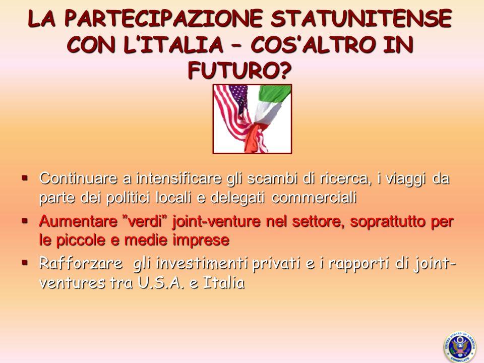 LA PARTECIPAZIONE STATUNITENSE CON LITALIA – COSALTRO IN FUTURO.