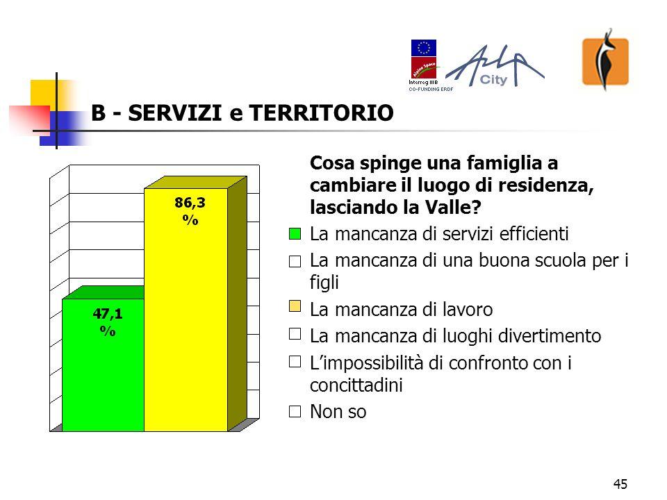 46 B - SERVIZI e TERRITORIO Cosa dovrebbe offrire di più il Comune ai giovani.