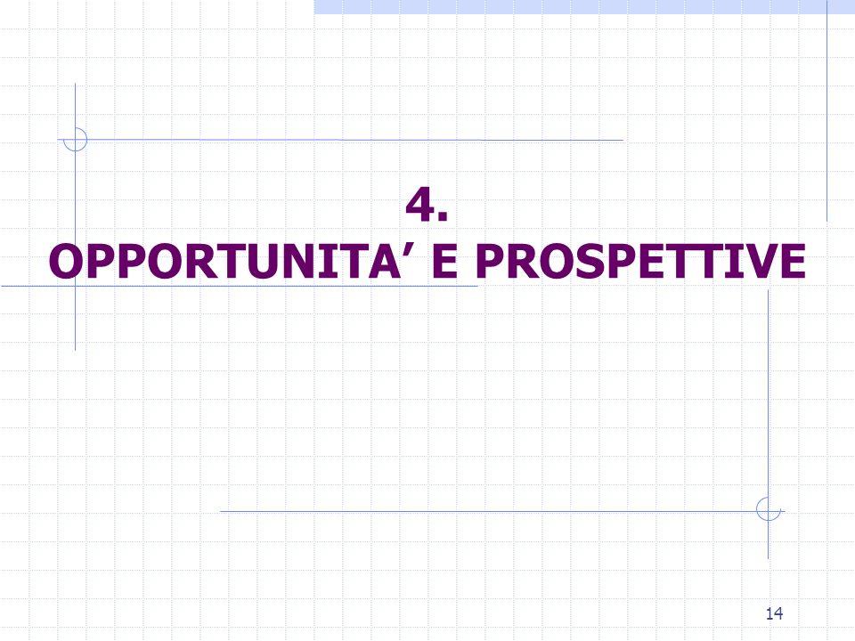 14 4. OPPORTUNITA E PROSPETTIVE