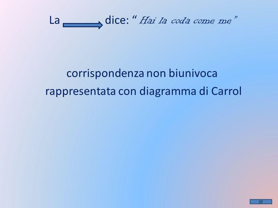 La dice: Hai la coda come me corrispondenza non biunivoca rappresentata con diagramma di Carrol