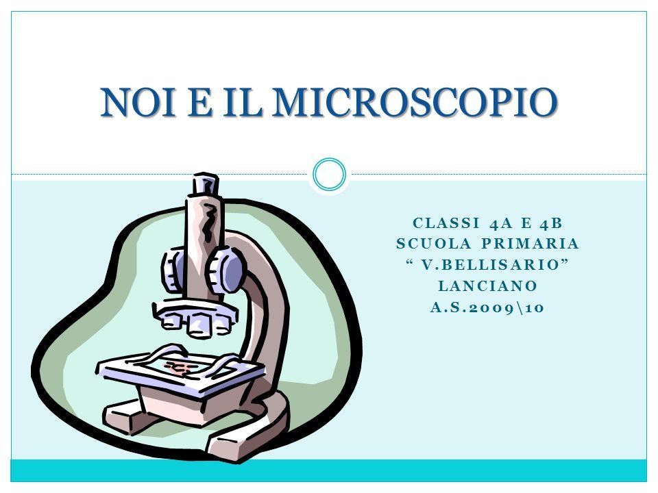 CLASSI 4A E 4B SCUOLA PRIMARIA V.BELLISARIO LANCIANO A.S.2009\10 NOI E IL MICROSCOPIO