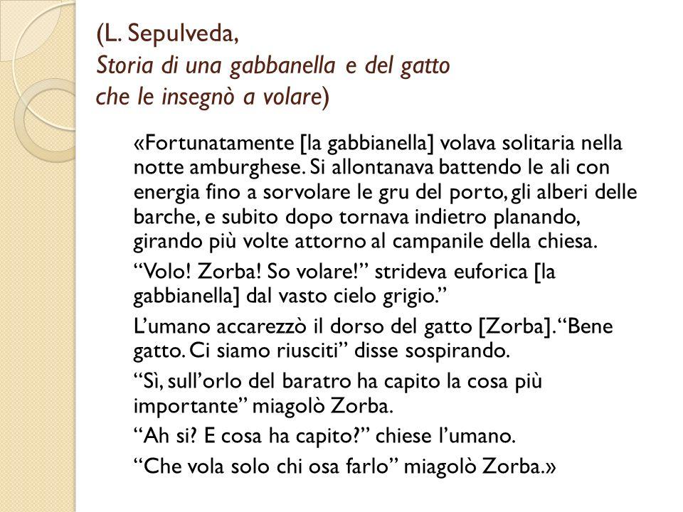 (L. Sepulveda, Storia di una gabbanella e del gatto che le insegnò a volare) «Fortunatamente [la gabbianella] volava solitaria nella notte amburghese.