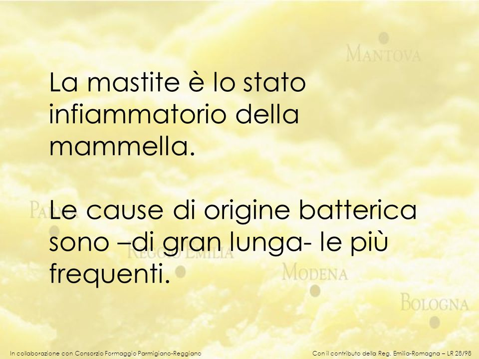 In collaborazione con Consorzio Formaggio Parmigiano-Reggiano La mastite è lo stato infiammatorio della mammella. Le cause di origine batterica sono –