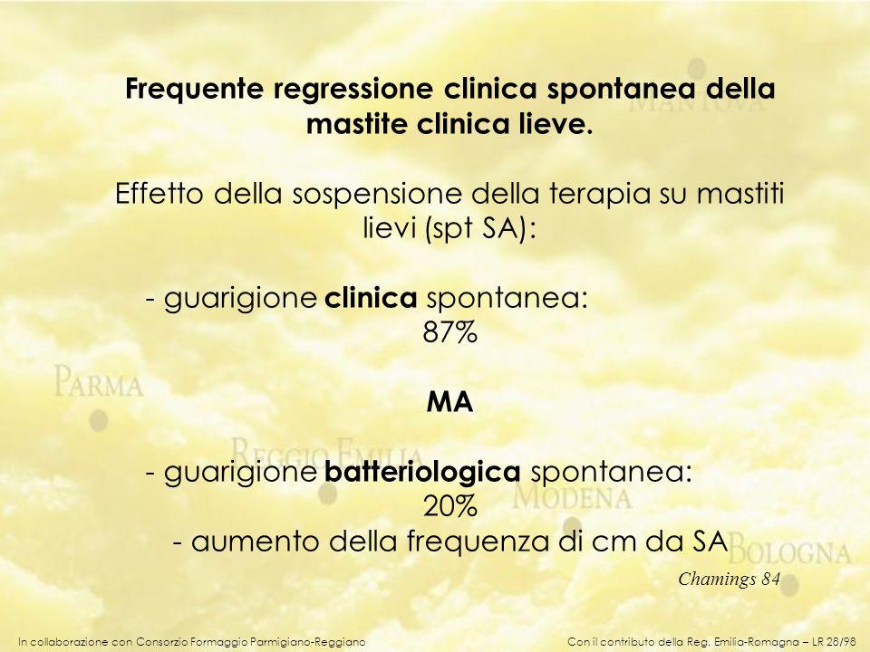 In collaborazione con Consorzio Formaggio Parmigiano-Reggiano Frequente regressione clinica spontanea della mastite clinica lieve. Effetto della sospe