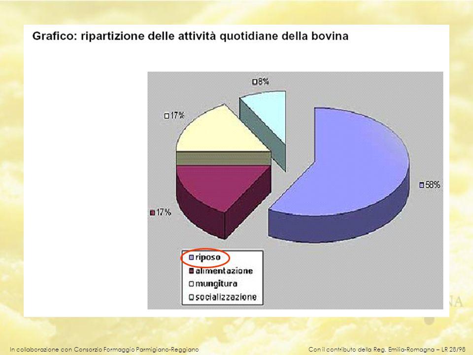 In collaborazione con Consorzio Formaggio Parmigiano-Reggiano Con il contributo della Reg. Emilia-Romagna – LR 28/98