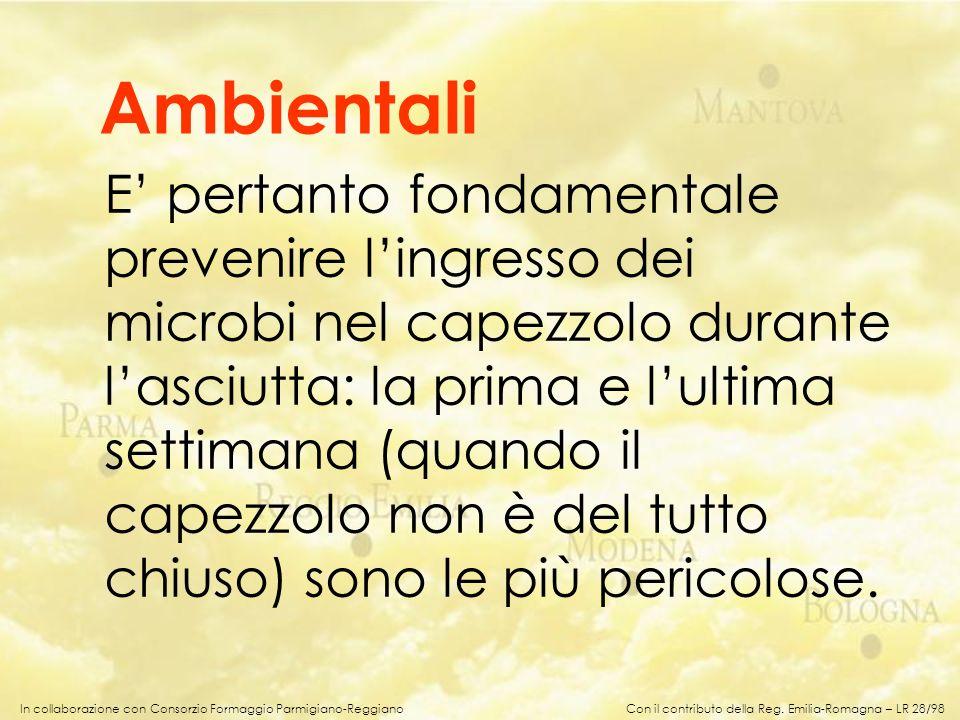 In collaborazione con Consorzio Formaggio Parmigiano-Reggiano E pertanto fondamentale prevenire lingresso dei microbi nel capezzolo durante lasciutta:
