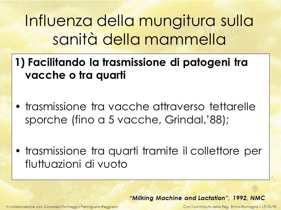 In collaborazione con Consorzio Formaggio Parmigiano-Reggiano Influenza della mungitura sulla sanità della mammella 1) Facilitando la trasmissione di