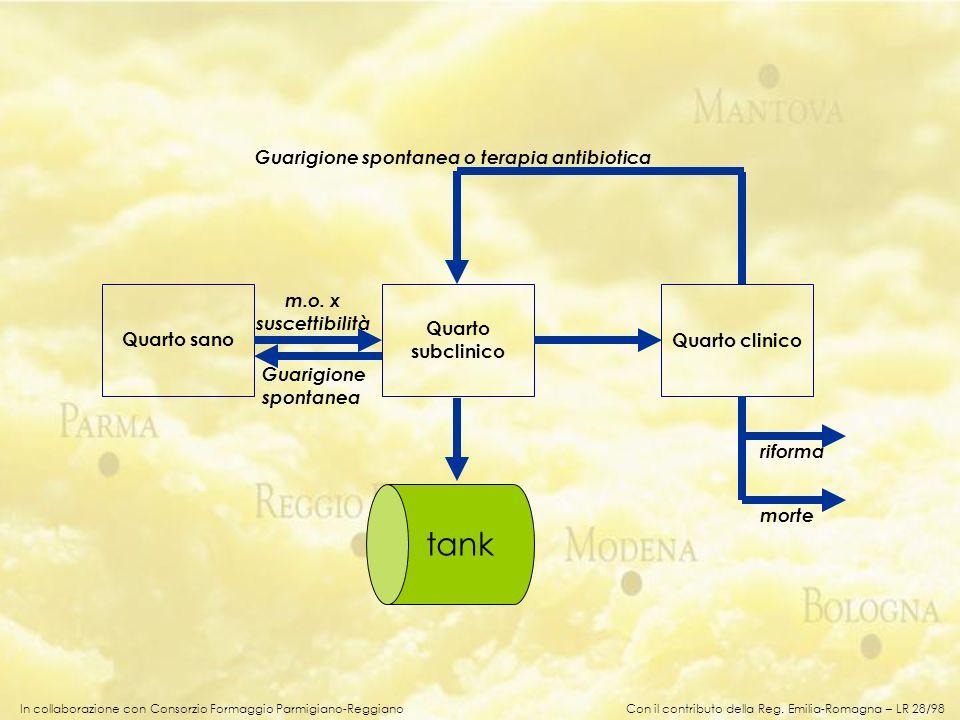 In collaborazione con Consorzio Formaggio Parmigiano-Reggiano Streptococchi ambientali (uberis, dysgalactiae, faecalis, canis…) Coliformi (E.