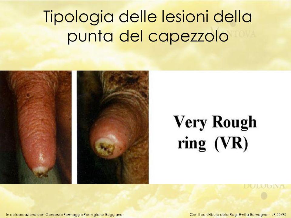 In collaborazione con Consorzio Formaggio Parmigiano-Reggiano Tipologia delle lesioni della punta del capezzolo Con il contributo della Reg. Emilia-Ro