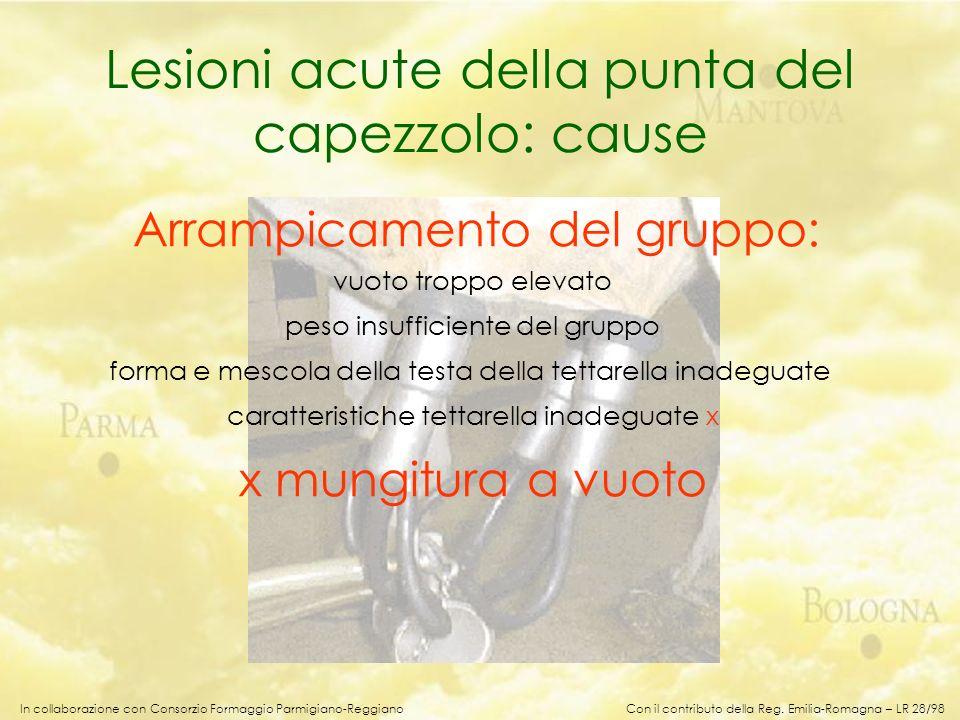 In collaborazione con Consorzio Formaggio Parmigiano-Reggiano Lesioni acute della punta del capezzolo: cause Arrampicamento del gruppo: vuoto troppo e