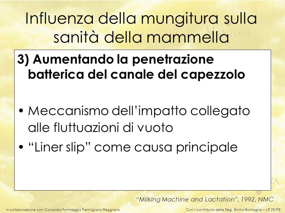 In collaborazione con Consorzio Formaggio Parmigiano-Reggiano 3) Aumentando la penetrazione batterica del canale del capezzolo Meccanismo dellimpatto