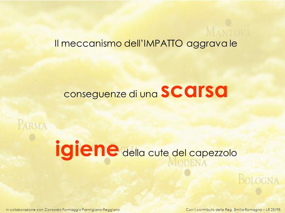 In collaborazione con Consorzio Formaggio Parmigiano-Reggiano Il meccanismo dellIMPATTO aggrava le conseguenze di una scarsa igiene della cute del cap