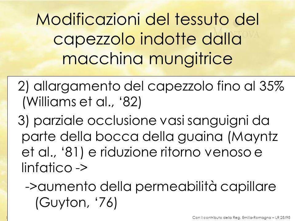 In collaborazione con Consorzio Formaggio Parmigiano-Reggiano Modificazioni del tessuto del capezzolo indotte dalla macchina mungitrice 2) allargament