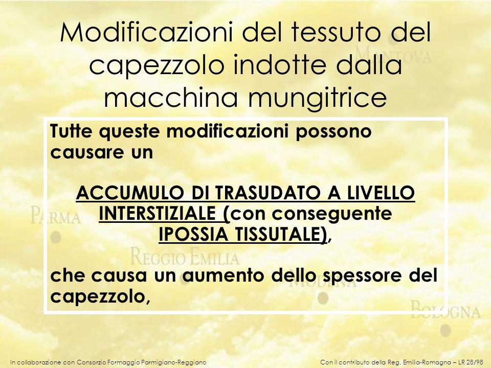 In collaborazione con Consorzio Formaggio Parmigiano-Reggiano Modificazioni del tessuto del capezzolo indotte dalla macchina mungitrice Tutte queste m