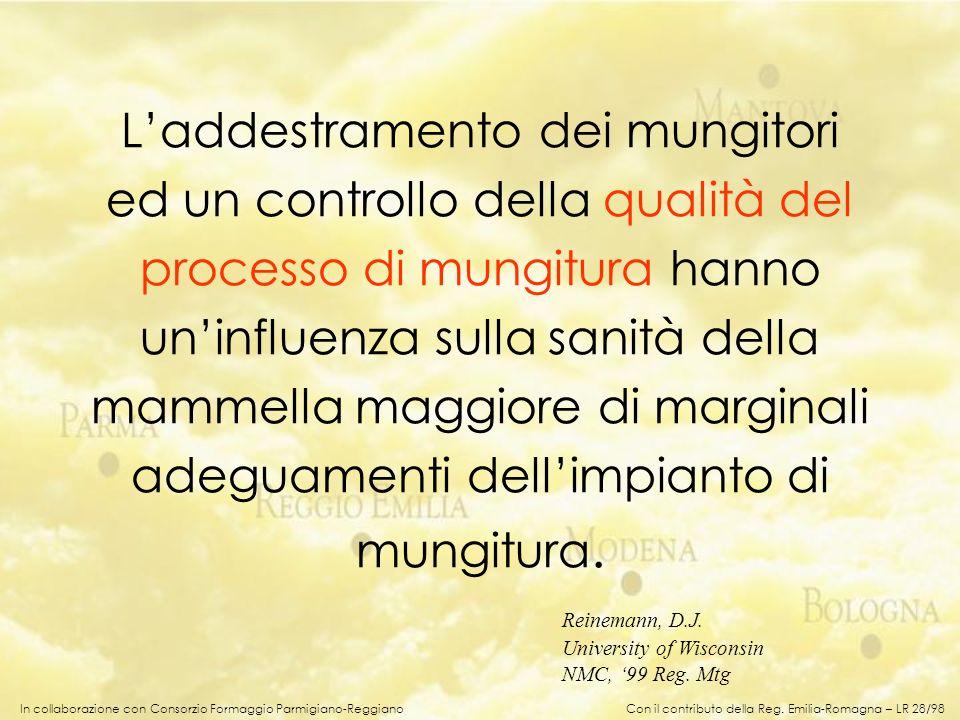 In collaborazione con Consorzio Formaggio Parmigiano-Reggiano Laddestramento dei mungitori ed un controllo della qualità del processo di mungitura han