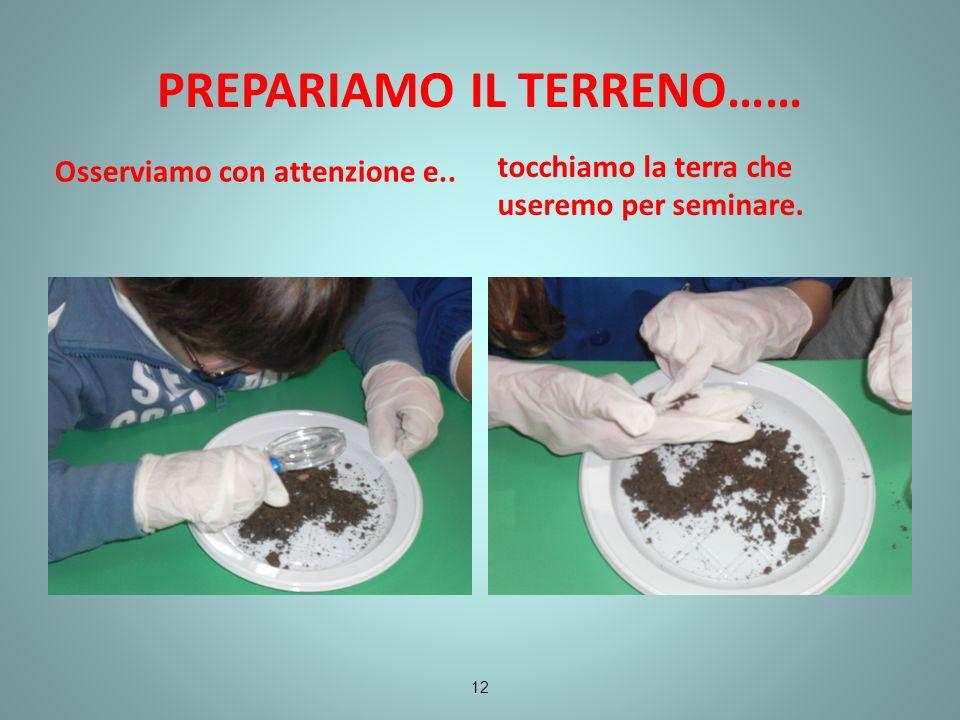 PREPARIAMO IL TERRENO…… Osserviamo con attenzione e.. tocchiamo la terra che useremo per seminare. 12