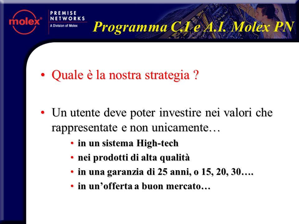 Quale è la nostra strategia ?Quale è la nostra strategia ? Un utente deve poter investire nei valori che rappresentate e non unicamente…Un utente deve
