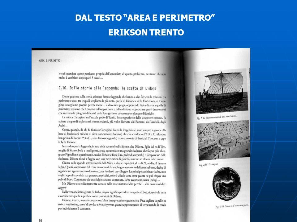 DAL TESTO AREA E PERIMETRO ERIKSON TRENTO