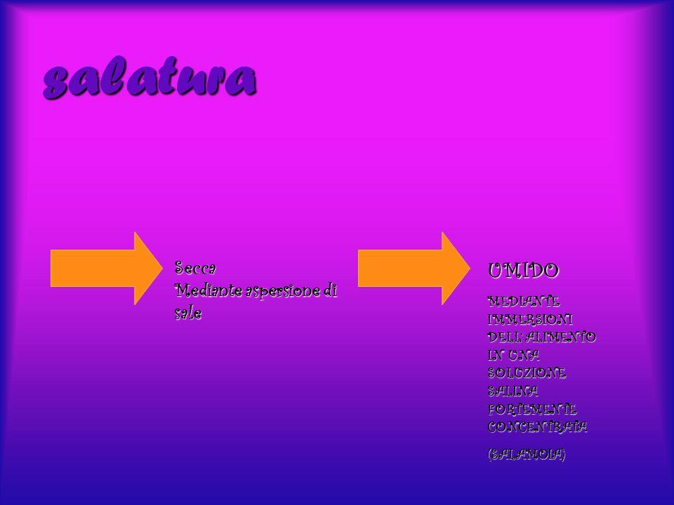 salatura Secca Mediante aspersione di sale UMIDO MEDIANTE IMMERSIONI DELL ALIMENTO IN UNA SOLUZIONE SALINA FORTEMENTE CONCENTRATA (SALAMOIA)