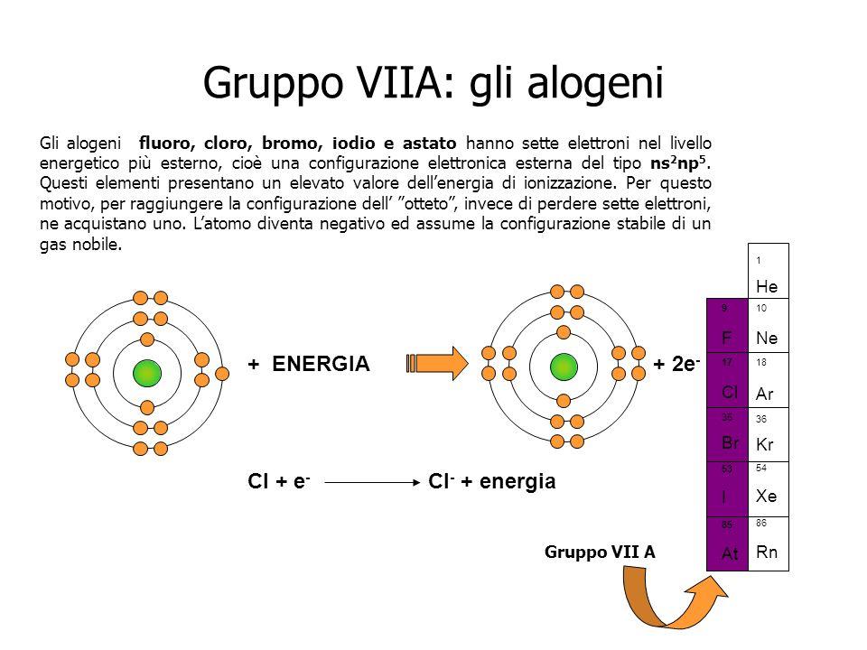 Gruppo VIIA: gli alogeni Gli alogeni fluoro, cloro, bromo, iodio e astato hanno sette elettroni nel livello energetico più esterno, cioè una configura
