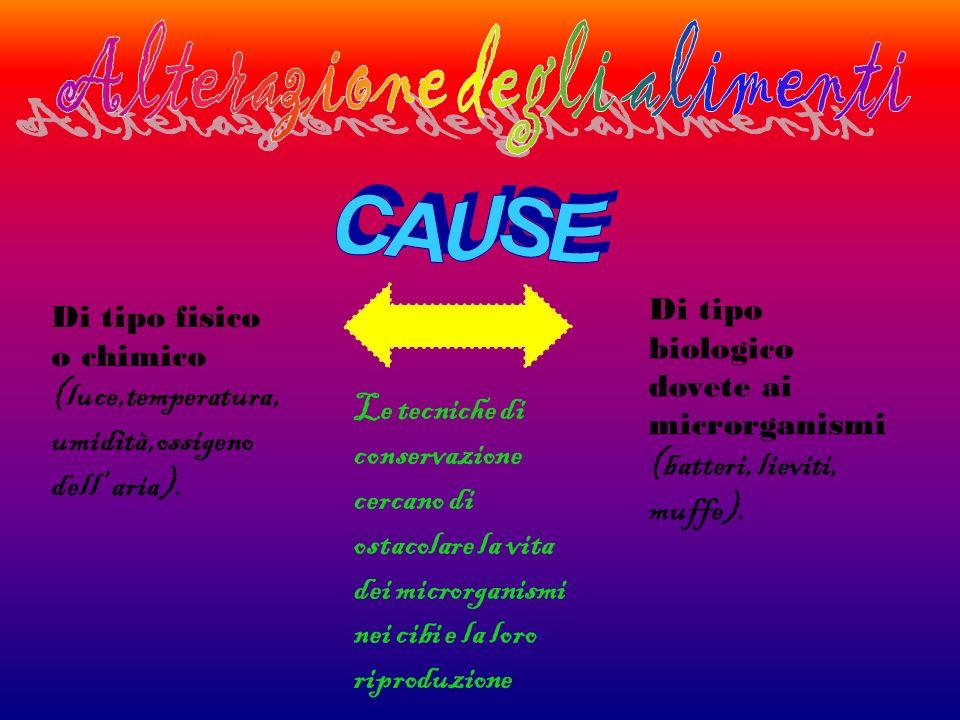 Di tipo fisico o chimico (luce,temperatura, umidità,ossigeno dell aria). Di tipo biologico dovete ai microrganismi (batteri, lieviti, muffe). Le tecni