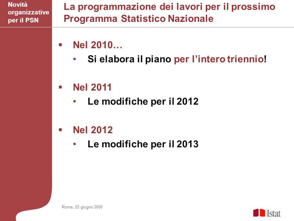 La programmazione dei lavori per il prossimo Programma Statistico Nazionale Nel 2010… Si elabora il piano per lintero triennio.