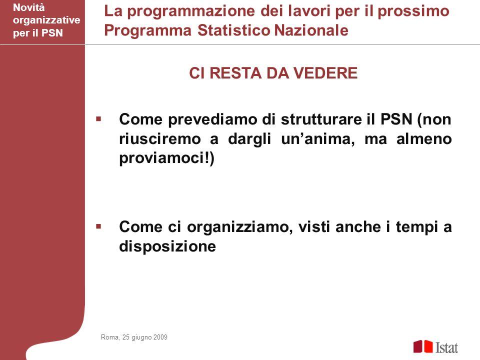 La programmazione dei lavori per il prossimo Programma Statistico Nazionale CI RESTA DA VEDERE Come prevediamo di strutturare il PSN (non riusciremo a dargli unanima, ma almeno proviamoci!) Come ci organizziamo, visti anche i tempi a disposizione Novità organizzative per il PSN Roma, 25 giugno 2009