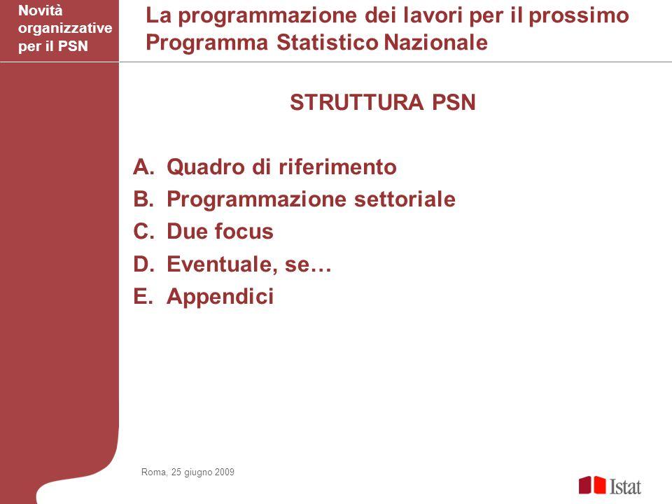 La programmazione dei lavori per il prossimo Programma Statistico Nazionale STRUTTURA PSN A.Quadro di riferimento B.Programmazione settoriale C.Due focus D.Eventuale, se… E.Appendici Novità organizzative per il PSN Roma, 25 giugno 2009