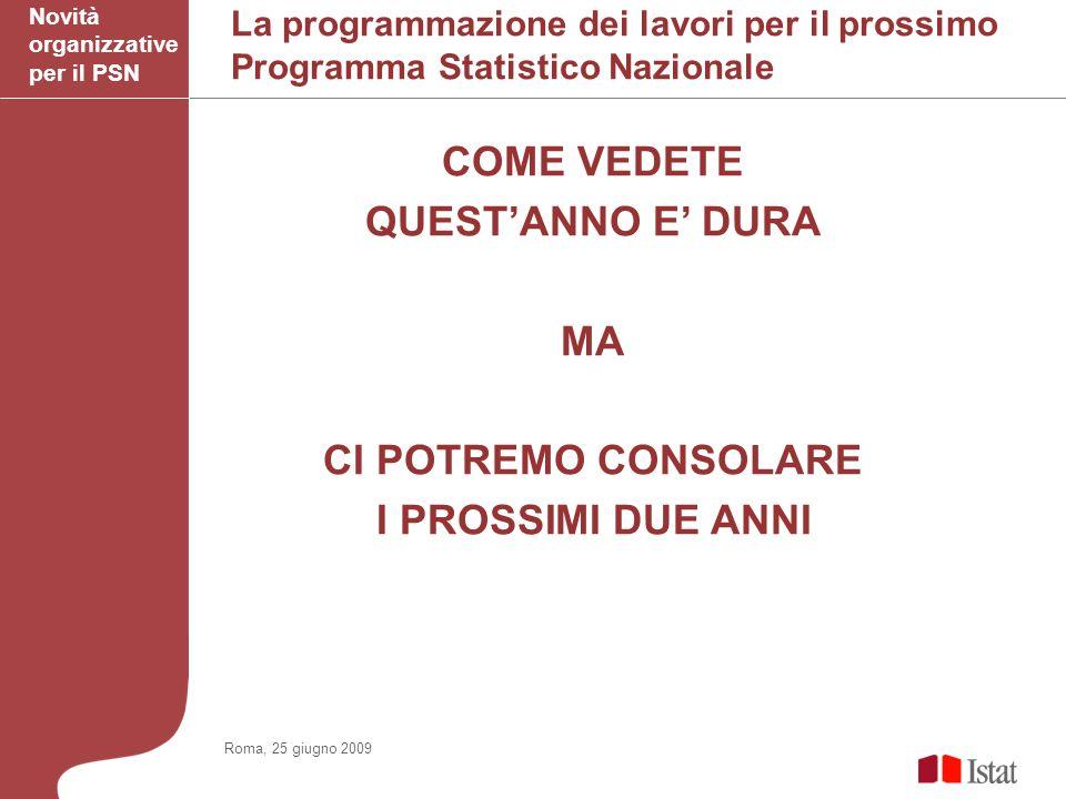 La programmazione dei lavori per il prossimo Programma Statistico Nazionale COME VEDETE QUESTANNO E DURA MA CI POTREMO CONSOLARE I PROSSIMI DUE ANNI Novità organizzative per il PSN Roma, 25 giugno 2009