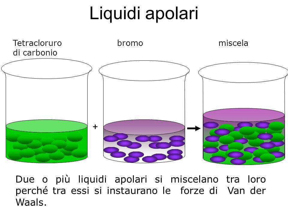 Liquidi apolari Due o più liquidi apolari si miscelano tra loro perché tra essi si instaurano le forze di Van der Waals. + Tetracloruro bromo miscela