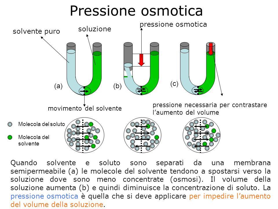 Pressione osmotica solvente puro soluzione movimento del solvente pressione osmotica pressione necessaria per contrastare laumento del volume Quando s