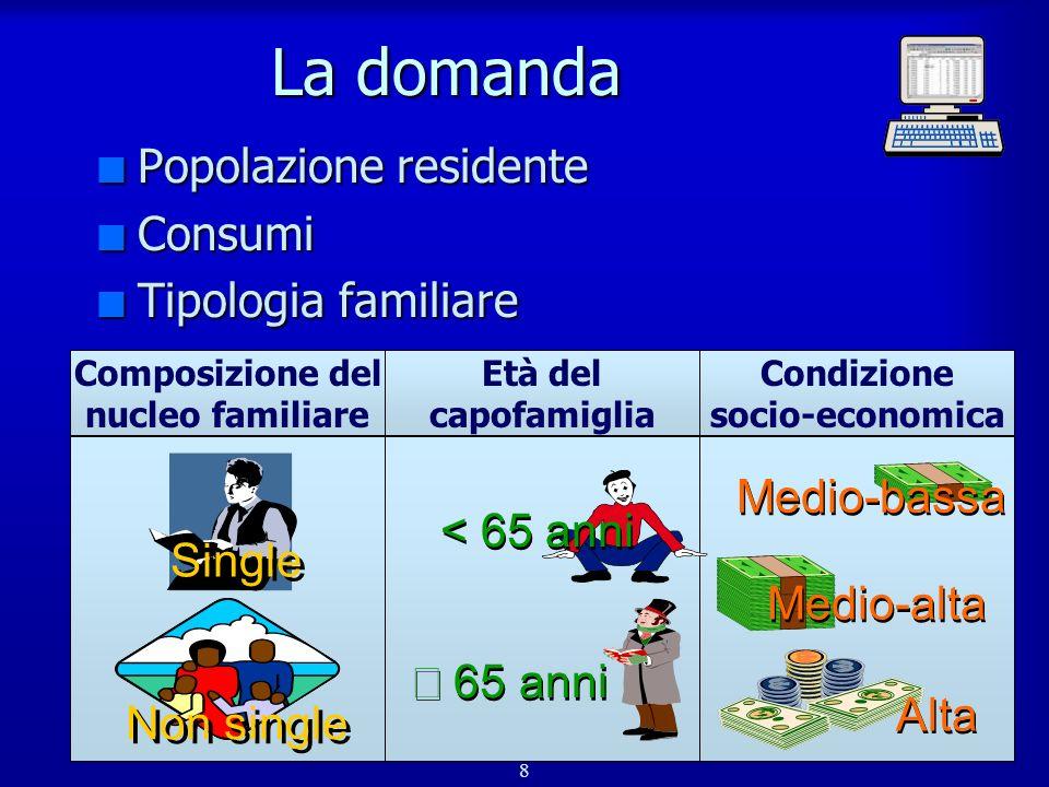 8 La domanda n Popolazione residente n Consumi n Tipologia familiare Composizione del nucleo familiare Età del capofamiglia Condizione socio-economica