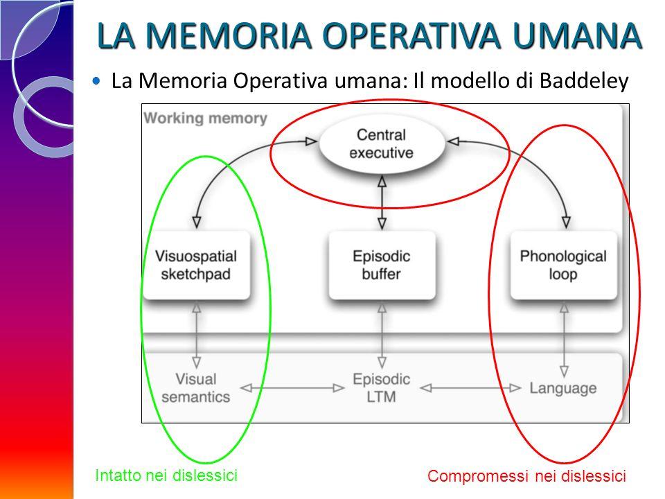 Compromessi nei dislessici Intatto nei dislessici LA MEMORIA OPERATIVA UMANA La Memoria Operativa umana: Il modello di Baddeley