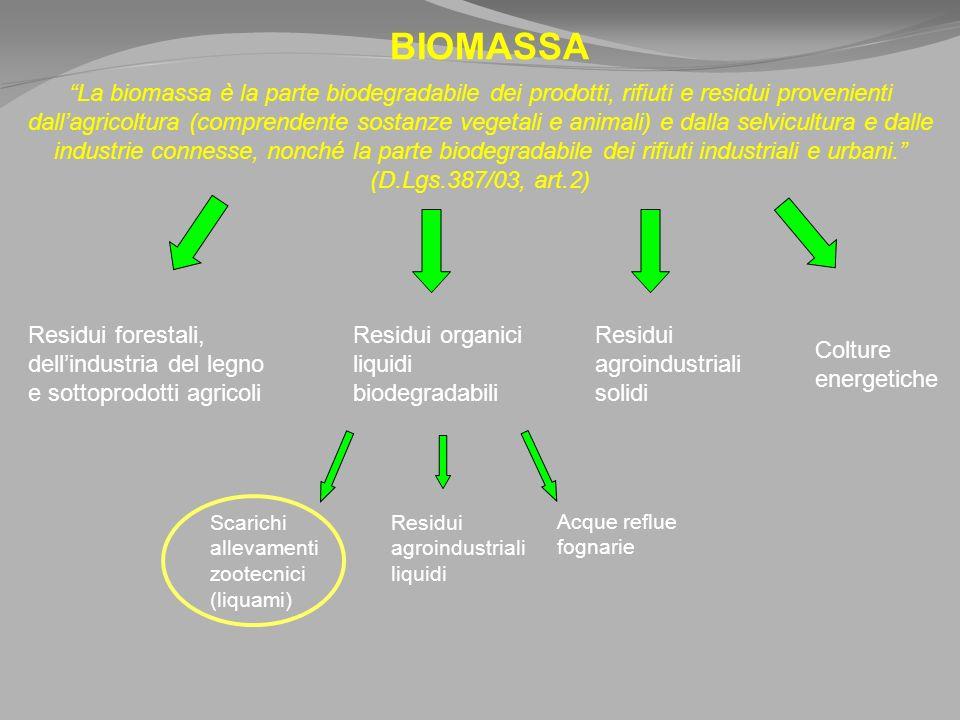 BIOMASSA La biomassa è la parte biodegradabile dei prodotti, rifiuti e residui provenienti dallagricoltura (comprendente sostanze vegetali e animali) e dalla selvicultura e dalle industrie connesse, nonché la parte biodegradabile dei rifiuti industriali e urbani.