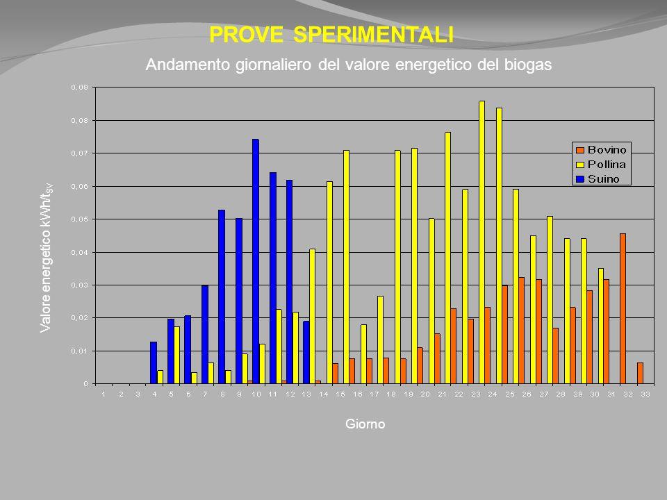 PROVE SPERIMENTALI Valore energetico kWh/t SV Giorno Andamento giornaliero del valore energetico del biogas