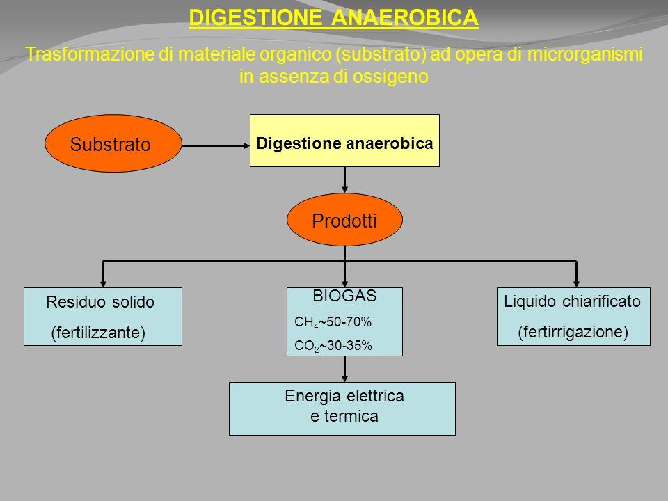 DIGESTIONE ANAEROBICA Trasformazione di materiale organico (substrato) ad opera di microrganismi in assenza di ossigeno Substrato Digestione anaerobica Prodotti Residuo solido (fertilizzante) BIOGAS CH 4 ~50-70% CO 2 ~30-35% Liquido chiarificato (fertirrigazione) Energia elettrica e termica