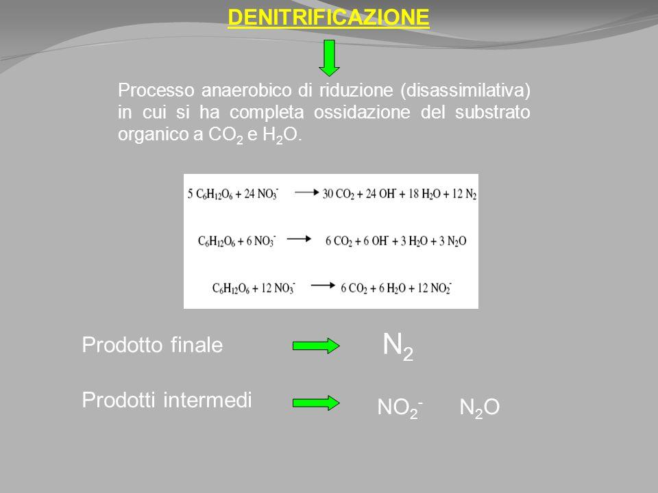 DENITRIFICAZIONE Processo anaerobico di riduzione (disassimilativa) in cui si ha completa ossidazione del substrato organico a CO 2 e H 2 O.