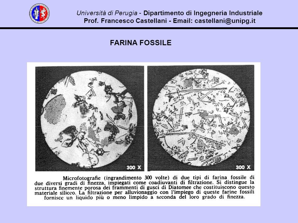 FARINA FOSSILE Università di Perugia - Dipartimento di Ingegneria Industriale Prof.