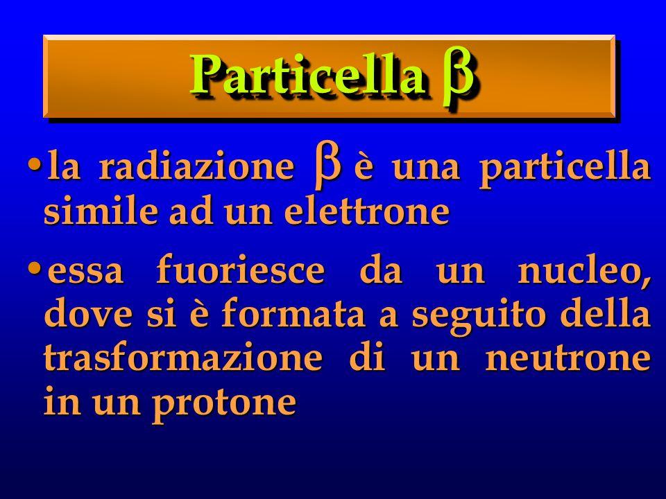 la radiazione è una particella simile ad un elettrone la radiazione è una particella simile ad un elettrone essa fuoriesce da un nucleo, dove si è formata a seguito della trasformazione di un neutrone in un protone essa fuoriesce da un nucleo, dove si è formata a seguito della trasformazione di un neutrone in un protone Particella Particella
