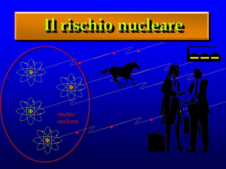 Il rischio nucleare...............................................................................................
