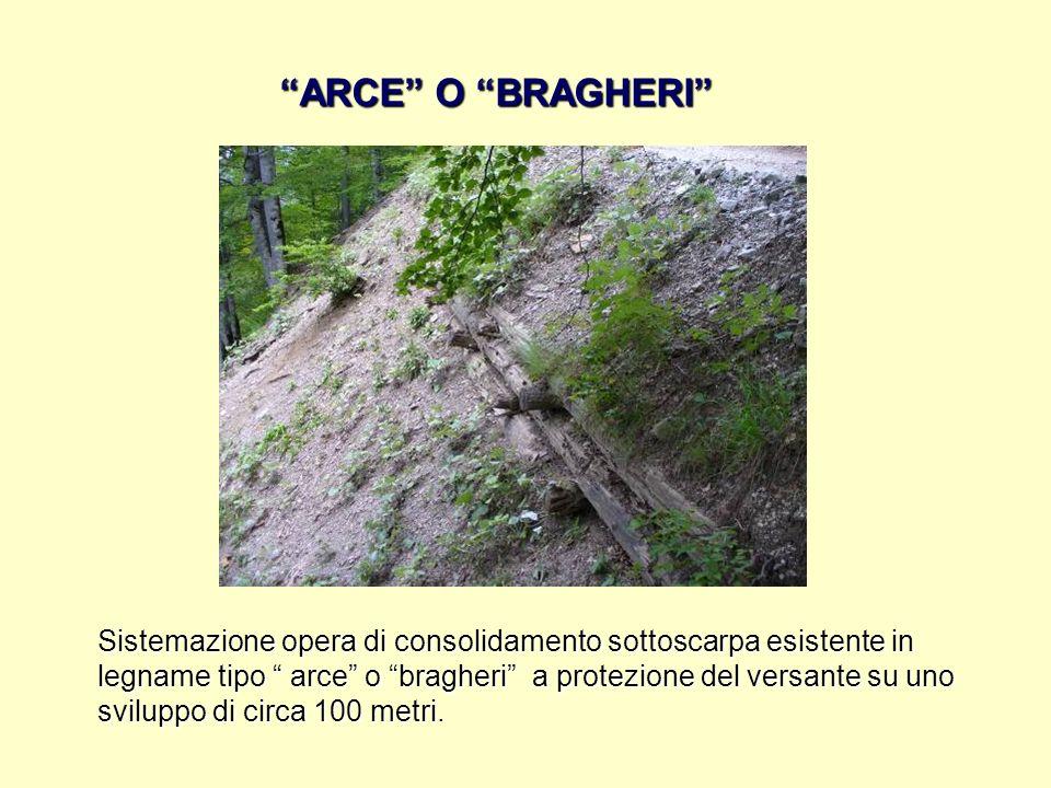ARCE O BRAGHERI Sistemazione opera di consolidamento sottoscarpa esistente in legname tipo arce o bragheri a protezione del versante su uno sviluppo d