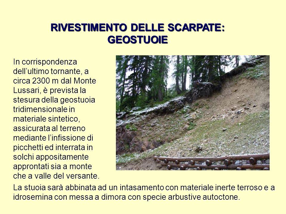 RIVESTIMENTO DELLE SCARPATE: GEOSTUOIE In corrispondenza dellultimo tornante, a circa 2300 m dal Monte Lussari, è prevista la stesura della geostuoia