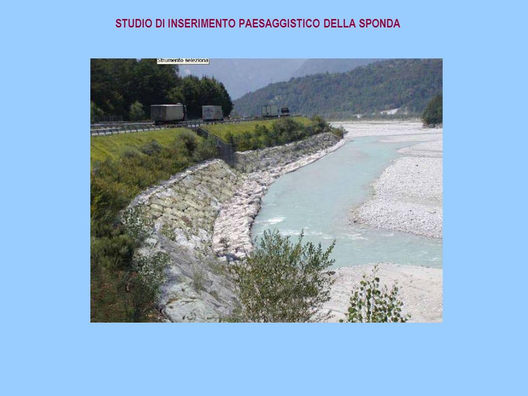 STUDIO DI INSERIMENTO PAESAGGISTICO DELLA SPONDA