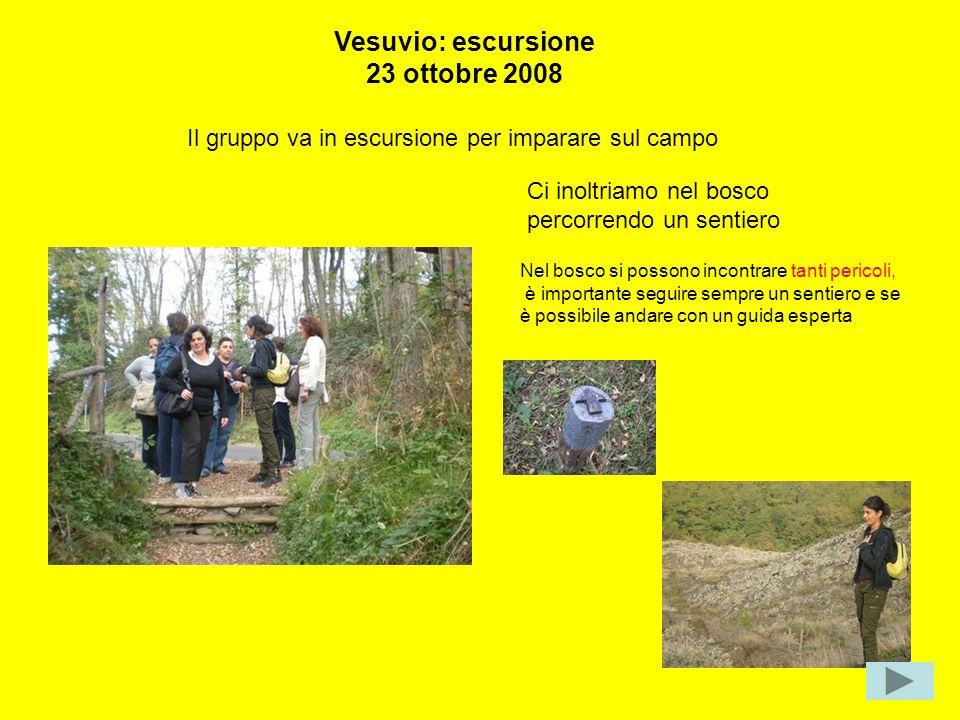 Ci inoltriamo nel bosco percorrendo un sentiero Il gruppo va in escursione per imparare sul campo Vesuvio: escursione 23 ottobre 2008 Nel bosco si pos