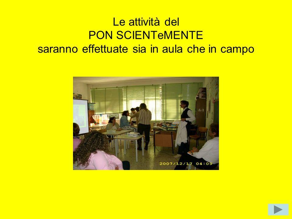Le attività del PON sono terminate ed il gruppo arricchitosi ringrazia la dottoressa GIULIA per averci dato la possibilità di IMPARARE FACENDO Presentazione realizzata dalla docente Valente Antonietta